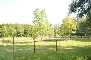 10955 Daw Collins Road, Splendora, TX 77372 (MLS #56726453) :: The Home Branch