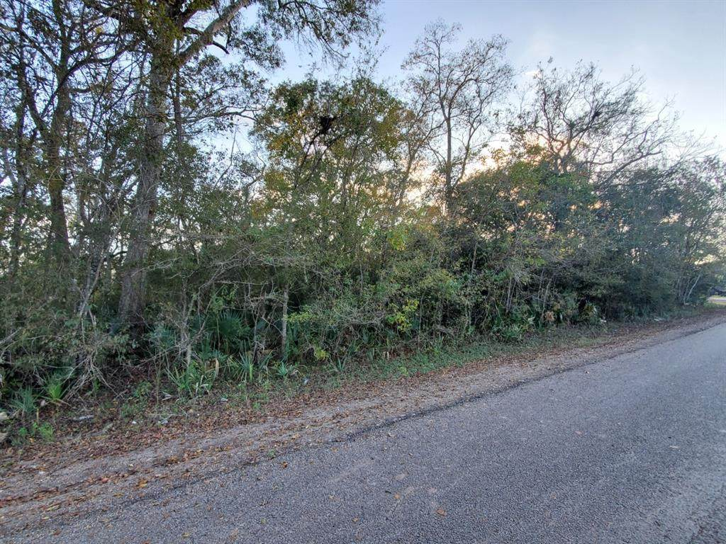 0 County Road 707 - Photo 1