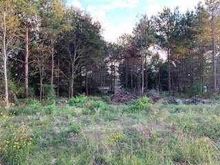 25844 Gloucester, New Caney, TX 77357 (MLS #57228615) :: Ellison Real Estate Team