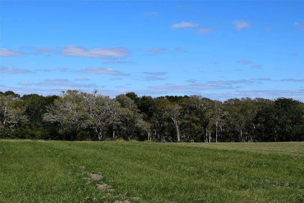 57 River Tree Drive Drive - Photo 1