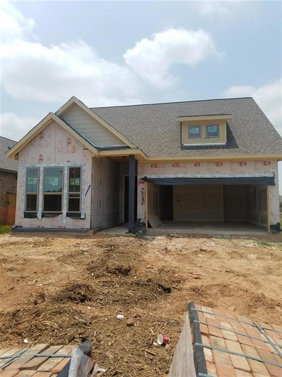 2535 Amethyst Isle Lane, Missouri City, TX 77459 (MLS #57858992) :: The Heyl Group at Keller Williams