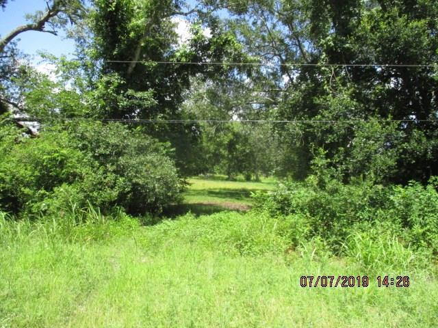 19A County Road 878A, Sweeny, TX 77480 (MLS #57859111) :: The SOLD by George Team