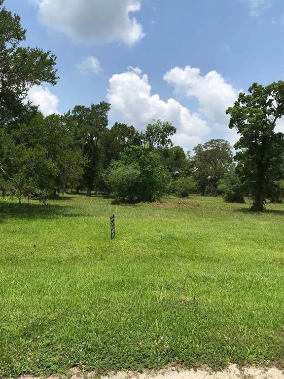 33210 Blue Marlin Drive, Richwood, TX 77531 (MLS #58099646) :: Ellison Real Estate Team