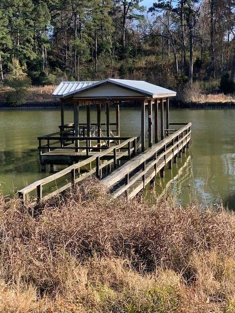 0 Caney Creek Drive, Livingston, TX 77360 (MLS #58366078) :: Michele Harmon Team