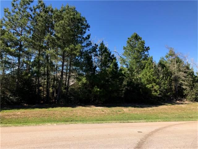 4123 West Crown Crossing, Montgomery, TX 77316 (MLS #59383309) :: Fairwater Westmont Real Estate