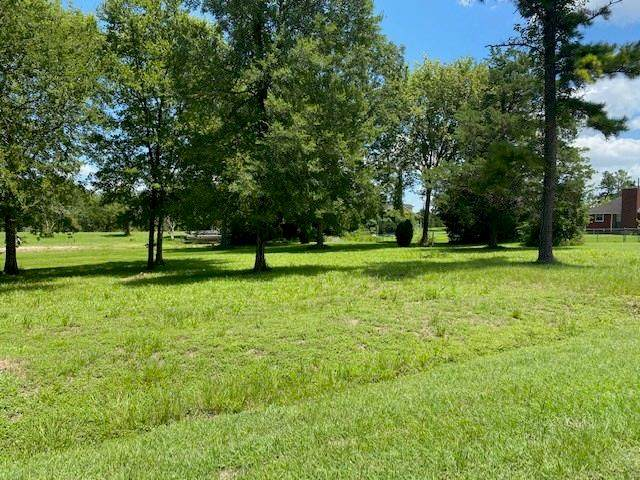 20 Gull Nest Lane, Coldspring, TX 77331 (MLS #59432396) :: The SOLD by George Team