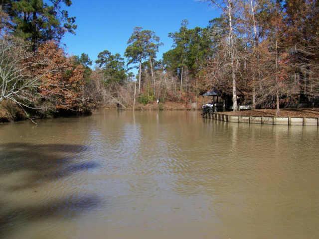 TBD 9 Village Cove Loop, Livingston, TX 77351 (MLS #59799153) :: Christy Buck Team