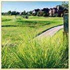 20222 Creekdale Bend Drive - Photo 9