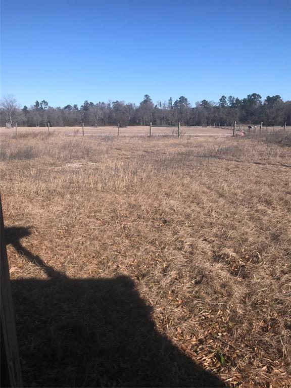 141 Willow Creek, Huntsville, TX 77340 (MLS #60314759) :: Giorgi Real Estate Group