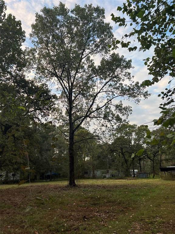 0 Bois D'arc Lane, Plantersville, TX 77363 (MLS #60513947) :: Michele Harmon Team