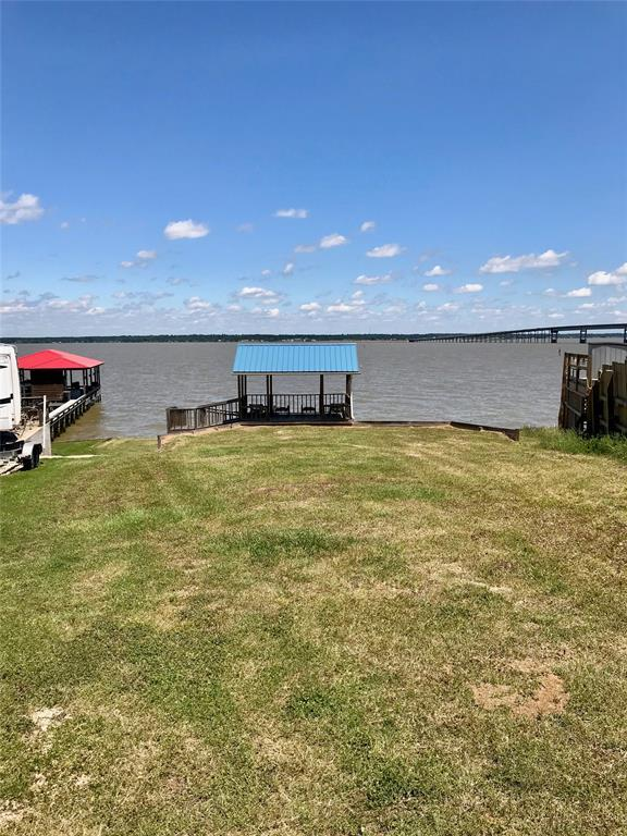 0 Lagoon Drive, Point Blank, TX 77364 (MLS #60822125) :: Lion Realty Group / Exceed Realty