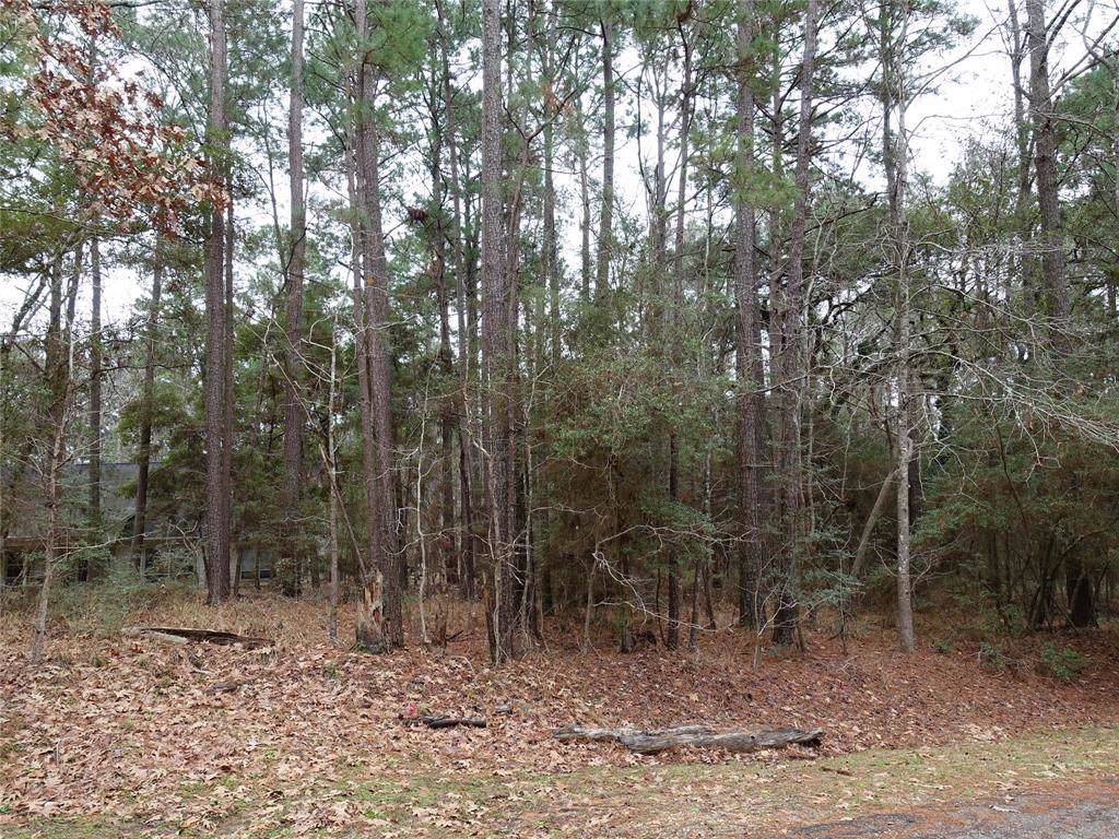 31 Green Tree Drive - Photo 1