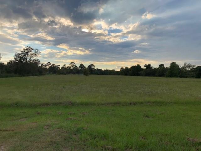 1098 North Fm 1486, Montgomery, TX 77356 (MLS #60949798) :: The Heyl Group at Keller Williams