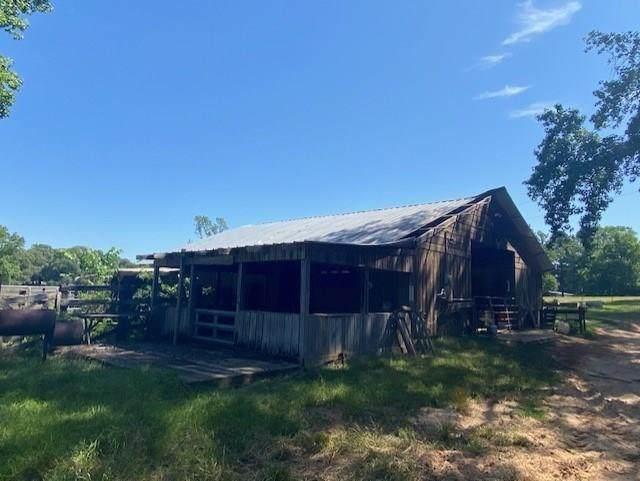 16 acres Cedar Lane Loop, Willis, TX 77378 (MLS #61128780) :: The Home Branch