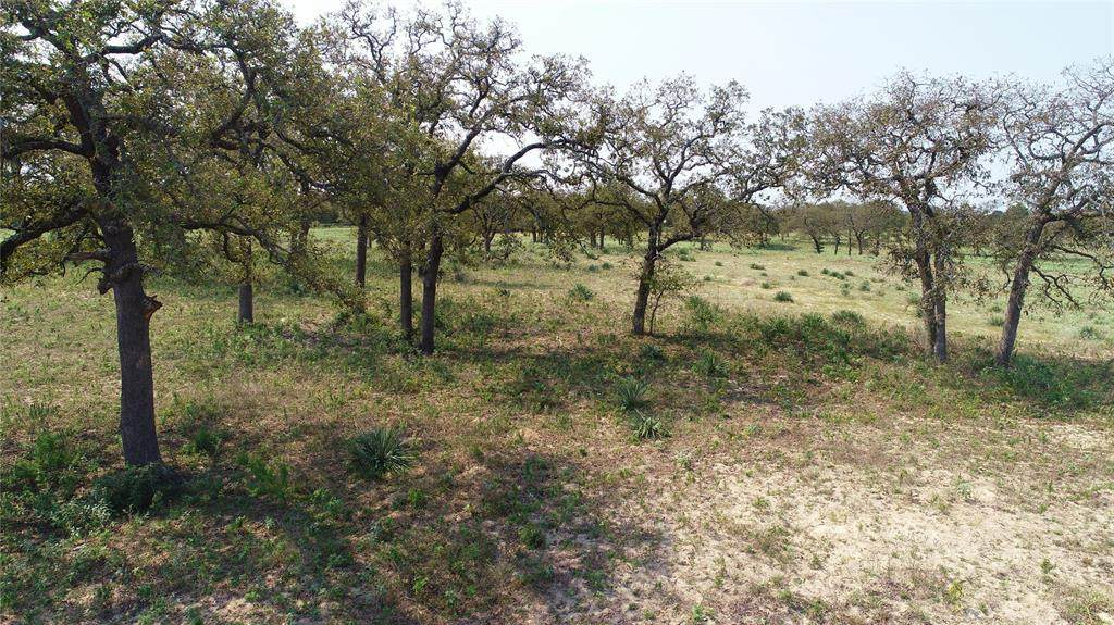 12.684 +/- Acres Fm 39 - Photo 1