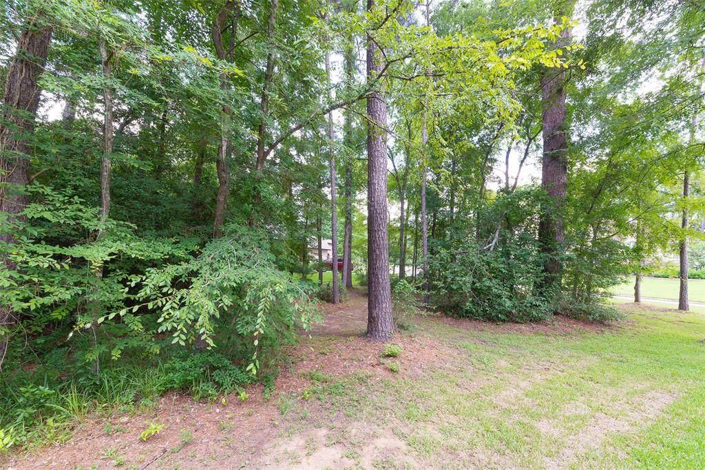 121 Pine Branch Drive - Photo 1