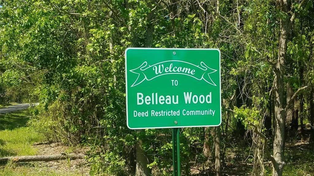20119 Belleau Wood Drive - Photo 1