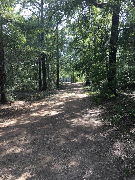 567 Piney Trail, Livingston, TX 77351 (MLS #61963199) :: Mari Realty