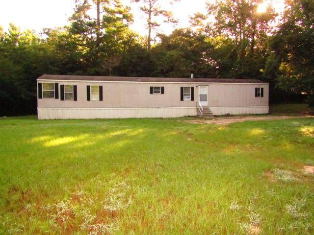 405 Cold Spring, Grapeland, TX 75844 (MLS #62333662) :: The SOLD by George Team