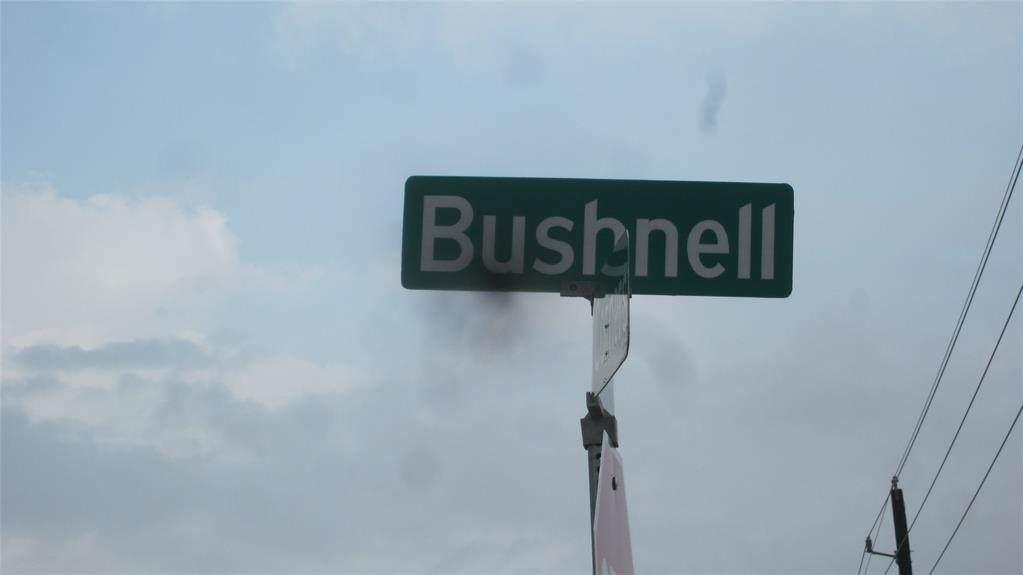 0 Bushnell Road - Photo 1