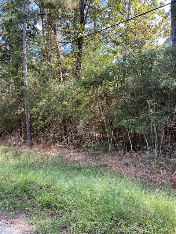00 Lizzard Trail, Trinity, TX 75862 (MLS #63006866) :: Michele Harmon Team