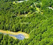 26577 Maverick Lane, Waller, TX 77484 (MLS #63040215) :: My BCS Home Real Estate Group
