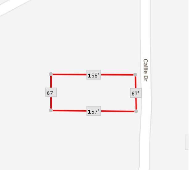 26537 Callie Drive, Hempstead, TX 77445 (MLS #63236473) :: The SOLD by George Team