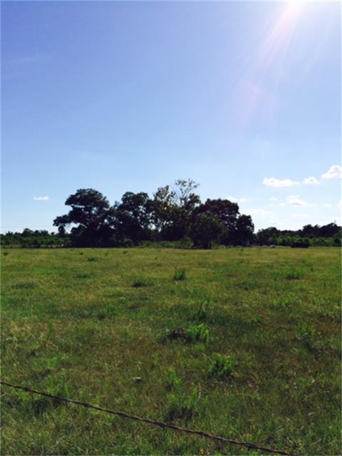 1409 Winfrey Lane, Tomball, TX 77375 (MLS #63295729) :: The Parodi Team at Realty Associates