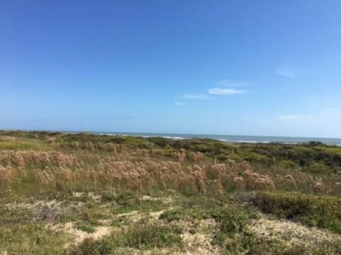 1418 Hwy 87, Crystal Beach, TX 77650 (MLS #63645205) :: Caskey Realty