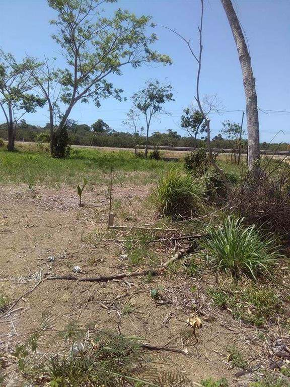 000 Lot 2101 Block 31 Dangriga South - Belize - Photo 1