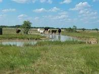 1343 & 1327 County Rd 2152, Rock Island, TX 77470 (MLS #6409762) :: Green Residential