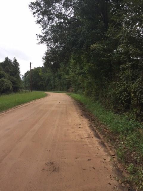 TBD Buc Creek, Shepherd, TX 77371 (MLS #64167897) :: The Heyl Group at Keller Williams