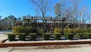 378 Norfolk, Livingston, TX 77351 (MLS #64203678) :: The SOLD by George Team