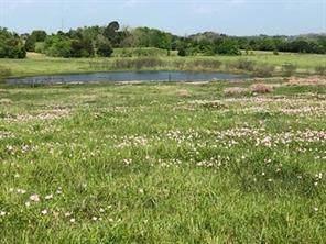 842 Frank Vacek Lane, Schulenburg, TX 78956 (MLS #64373210) :: Phyllis Foster Real Estate