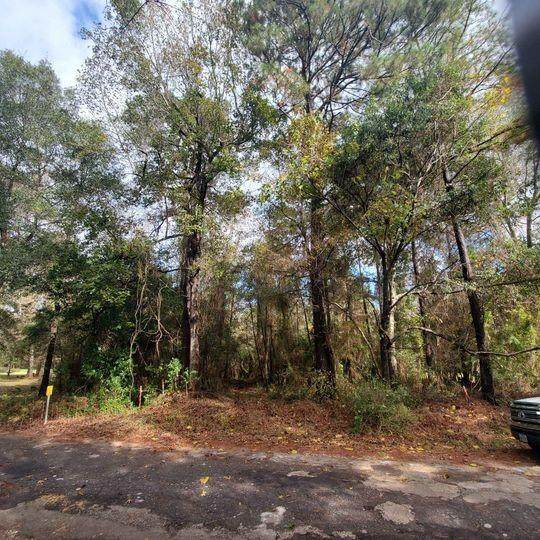 0 Holly Grove Off Road, Livingston, TX 77351 (MLS #6509010) :: Homemax Properties