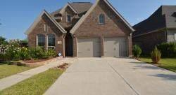 8134 Silverspot Lane, Missouri City, TX 77459 (MLS #65393670) :: Giorgi Real Estate Group
