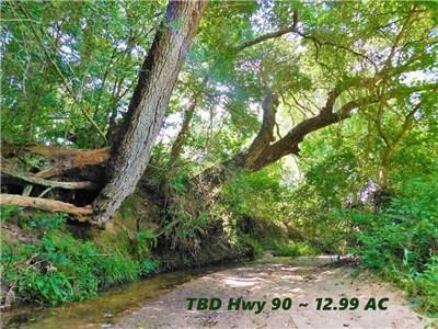 00 TBD Us Hwy 90 IH-10 N Feeder, Columbus, TX 78934 (MLS #66131858) :: The SOLD by George Team
