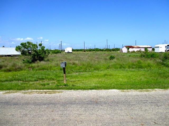 0 Blue Water, Sargent, TX 77414 (MLS #66332774) :: Texas Home Shop Realty