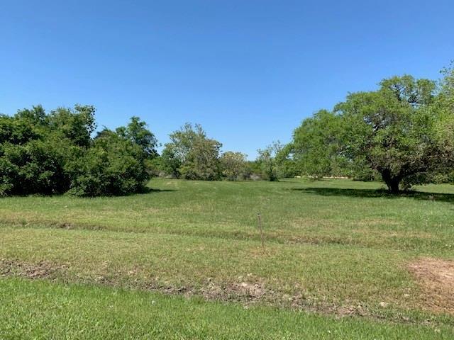 13 Center Tree Drive, Palacios, TX 77465 (MLS #66504403) :: Texas Home Shop Realty