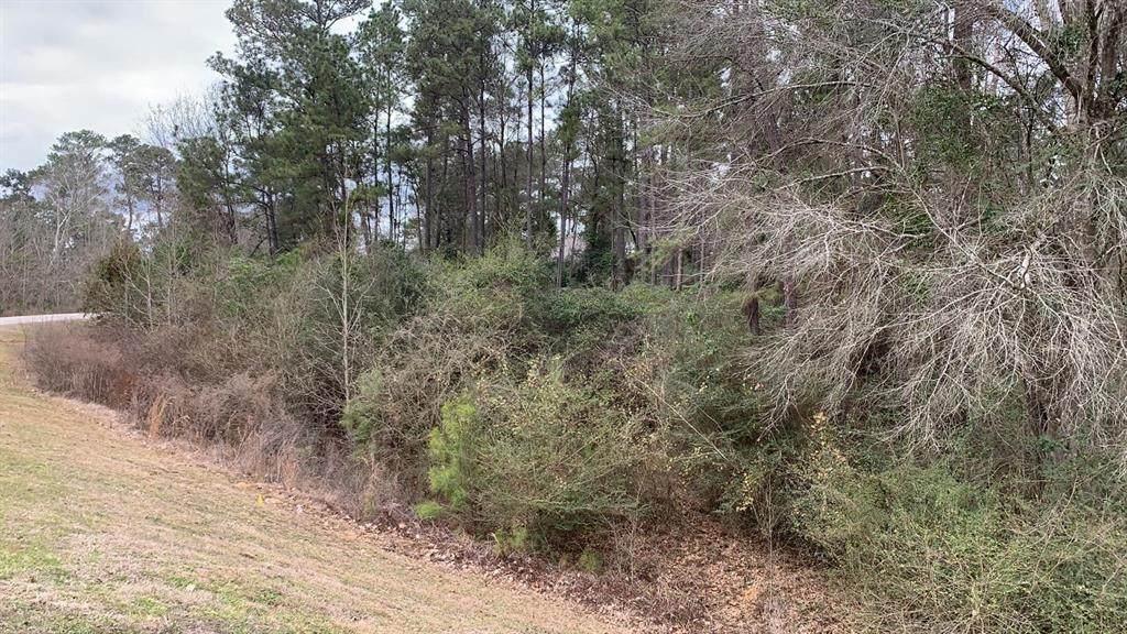 11726 Tara Plantation Drive - Photo 1