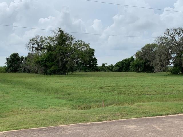 280 Pony Trail, Angleton, TX 77515 (MLS #66938157) :: The Jill Smith Team