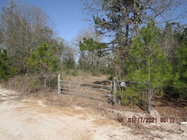 000 Wilde Ridge Trail, Montgomery, TX 77316 (MLS #67178847) :: All Cities USA Realty