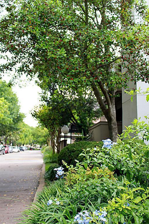 10049 Westpark Drive #111, Houston, TX 77042 (MLS #67448086) :: Texas Home Shop Realty