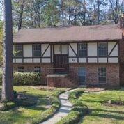 37 N Cypress Pine Drive, The Woodlands, TX 77381 (MLS #67563849) :: Krueger Real Estate