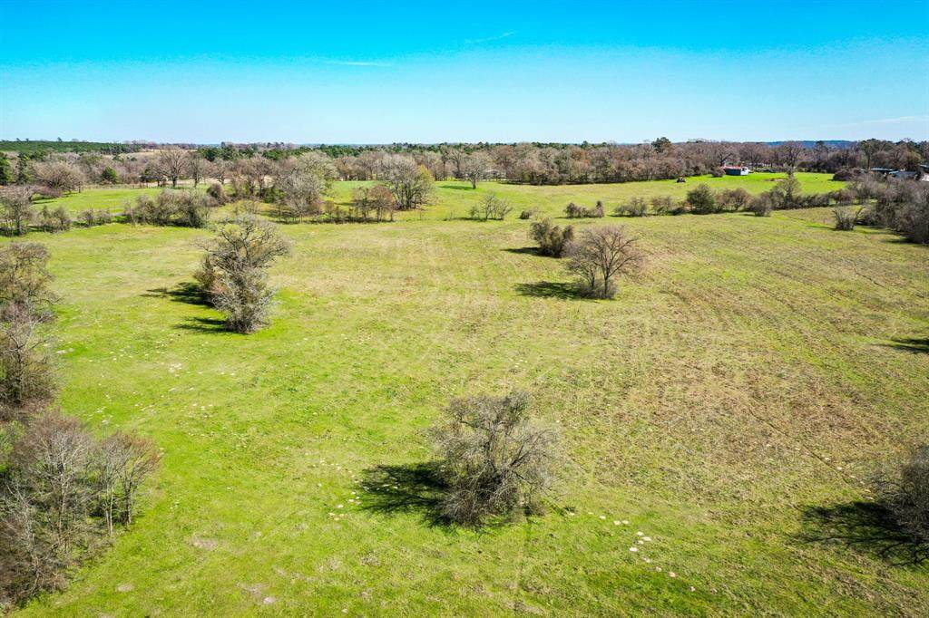86.97 Acres Rosenwall Road - Photo 1