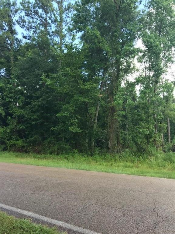Lot 4 Sherbrook, Conroe, TX 77385 (MLS #67922330) :: The SOLD by George Team