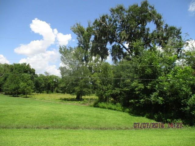 20 County Road 878A, Sweeny, TX 77480 (MLS #68220081) :: The SOLD by George Team
