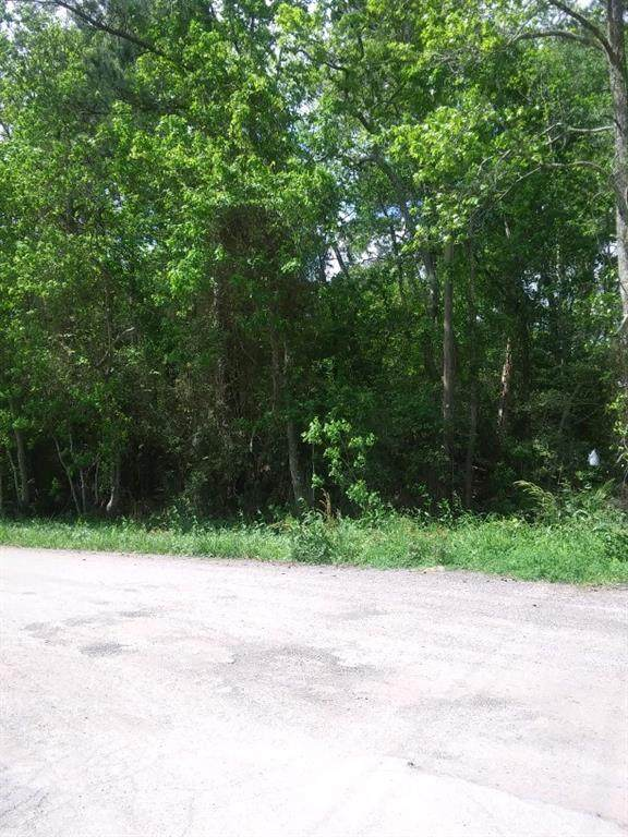 Lot 146 Allendale 02, Conroe, TX 77302 (MLS #68925676) :: The Bly Team