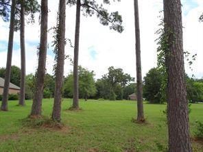 12545 Aries Loop, Willis, TX 77318 (MLS #69111964) :: Texas Home Shop Realty