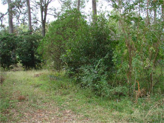 0000 County Road 3709, Splendora, TX 77372 (MLS #69364124) :: Giorgi Real Estate Group